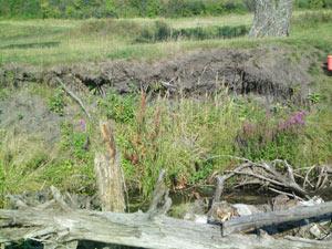 клад в реке